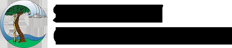 Seaview Ortho Logo